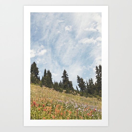 Mountain Flowers in the Sun Art Print