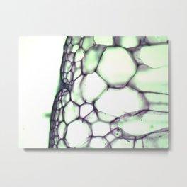 CAPSULE  Metal Print