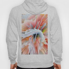 Exploding Enome Hoody