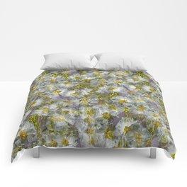 CISTUS LAURIFOLIUS  ROCK ROSE FLOWERS Comforters