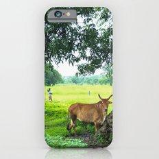 India [3] Slim Case iPhone 6s