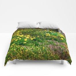 Spring has Sprung! Comforters