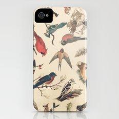 Vintage Songbirds Slim Case iPhone (4, 4s)