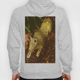 Feline Predator Hoody