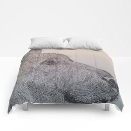 Bear Drawing Comforters