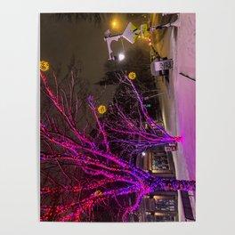 Longfellow Square Christmas Lights (2) Poster