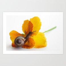 Little snail loves flowers Art Print