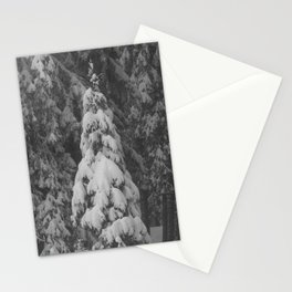 Winter pine tree, snowy tree Stationery Cards