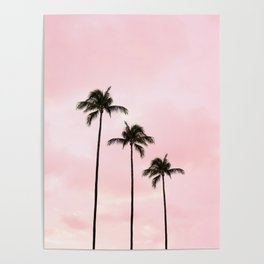 Palm Tree Photography Peach | Blush Pink | Millennial Pink | Miami Poster