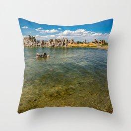 Mono_Lake California - 4 Throw Pillow
