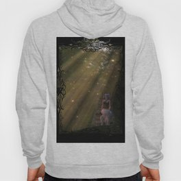 Road Less Travelled Hoody