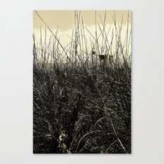 Desperation Canvas Print