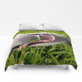 Laugh it off! Comforters