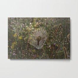 Morning Light on Spiderweb Metal Print