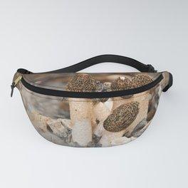 Mushroom Tile Fanny Pack