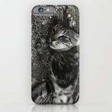 Wild cat iPhone 6s Slim Case
