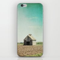 american beauty iPhone & iPod Skins featuring American Beauty Vol 21 by Farmhouse Chic