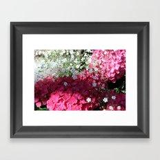 Bright Fuchsia Pink Hydrangea  Framed Art Print