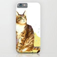 Cute Tabby Cat Slim Case iPhone 6s
