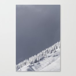 The Strom Has Past Canvas Print