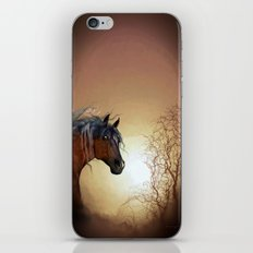 HORSE - Misty iPhone & iPod Skin