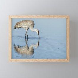 Sandhill Crane and Reflection Framed Mini Art Print