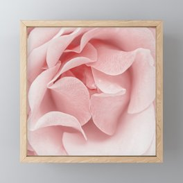 Pink flora Rose Bud- Roses and flowers Framed Mini Art Print