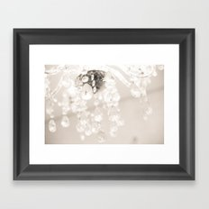 Crystals II Framed Art Print