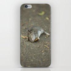 Stuart Little In Trouble iPhone & iPod Skin