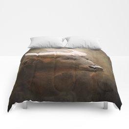 Congo Bull Comforters