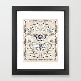 Three Moths Framed Art Print