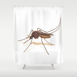 Mosquito by Lars Furtwaengler | Colored Pencil / Pastel Pencil | 2014 Shower Curtain