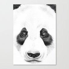 Panda Face Canvas Print