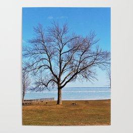The Tree by the Frozen Lake Poster