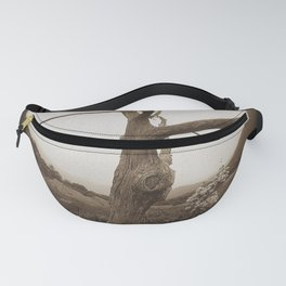 Fisheye view in the Blue Ridge Mountains Fanny Pack