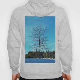 Alone and Leafless Hoody