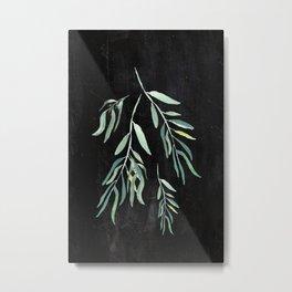 Eucalyptus Branches On Chalkboard II Metal Print