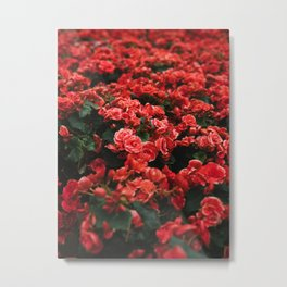 Field Of Lush Red Flowers Vintage Florals Metal Print