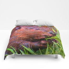 Golly Beaver! Comforters
