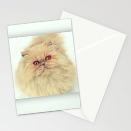 Who are you calling a big ball of fur?  Stationery Cards