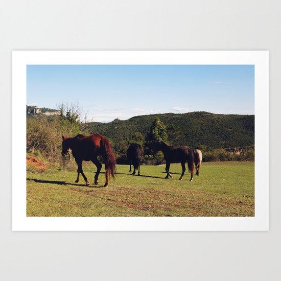 Horses [III] Art Print