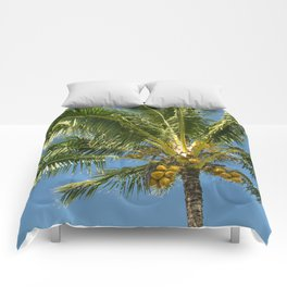 Hawaiian Coconut Palm Tree Comforters
