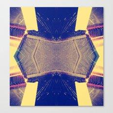 Spiderwebs  Canvas Print