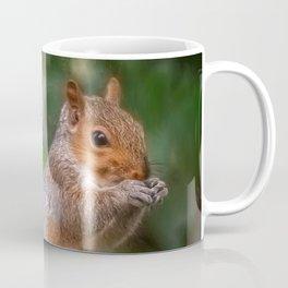 Cyril the Squirrel Coffee Mug