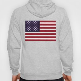 American flag with painterly treatment Hoody