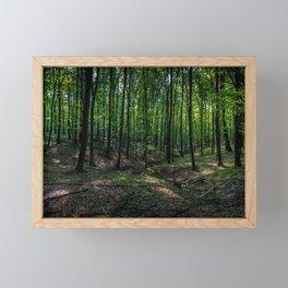 Mátra, Hungary Framed Mini Art Print
