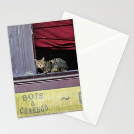Cat in the window of an old coffee shop of Bordeaux - Fine Art Travel Photography Stationery Cards