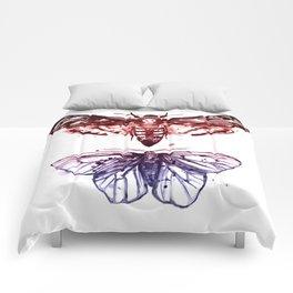Moths Comforters