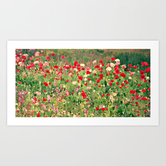 Pink and Red Poppy Flowers Wild in a Meadow Painterly Botanical Landscape Art Print