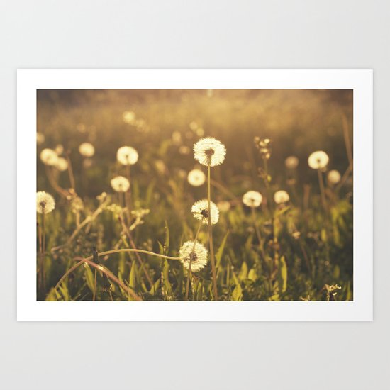 A Field of Wishes Art Print